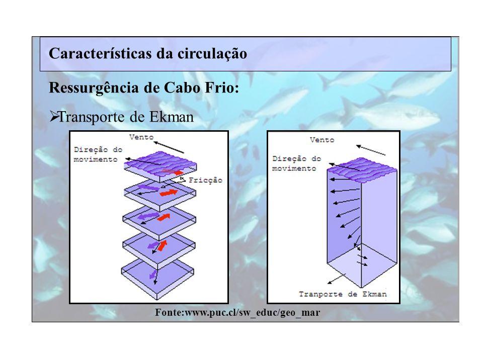 Características da circulação