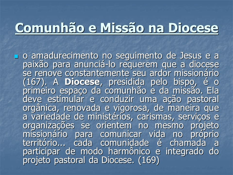 Comunhão e Missão na Diocese