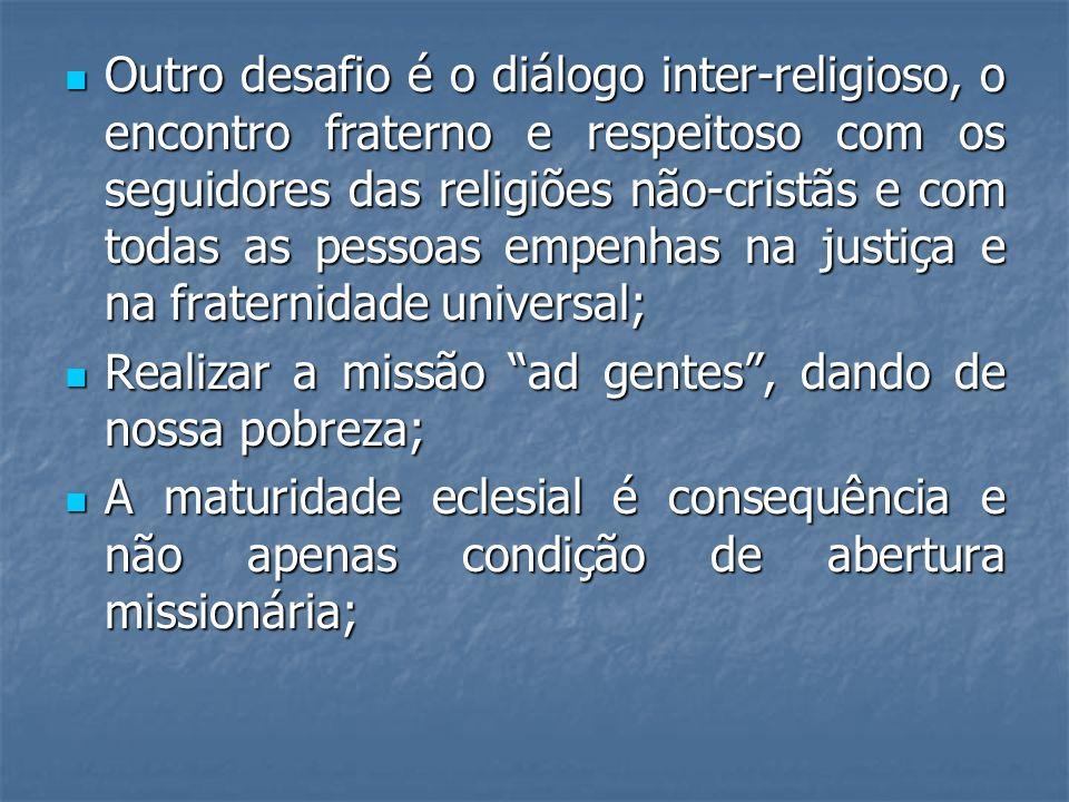 Outro desafio é o diálogo inter-religioso, o encontro fraterno e respeitoso com os seguidores das religiões não-cristãs e com todas as pessoas empenhas na justiça e na fraternidade universal;
