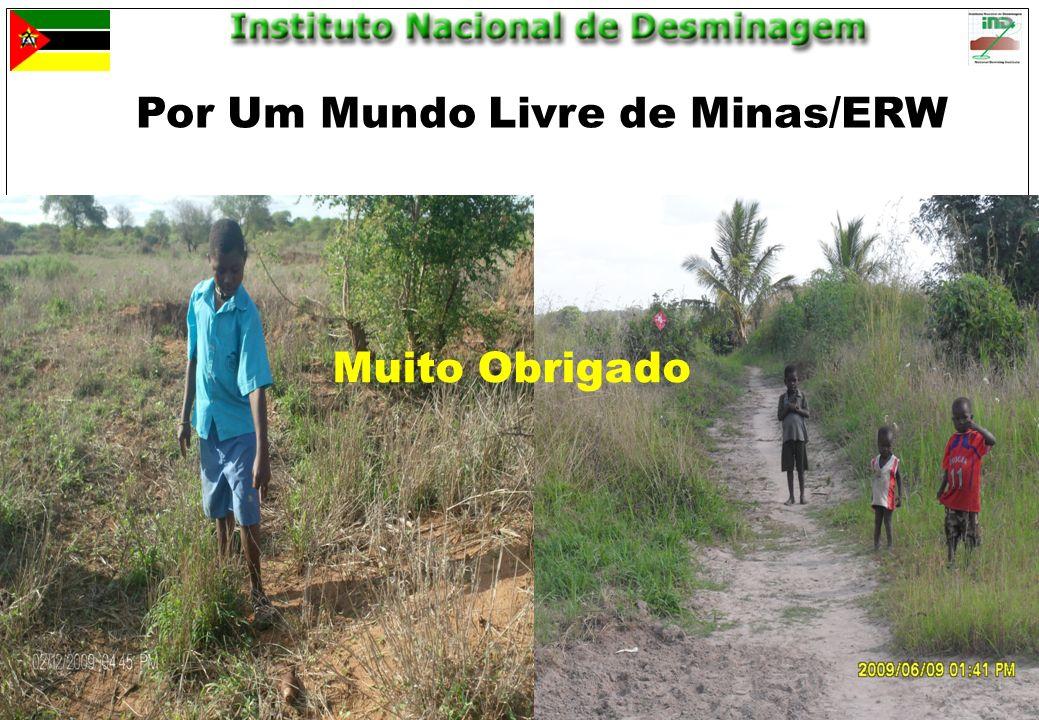 Por Um Mundo Livre de Minas/ERW