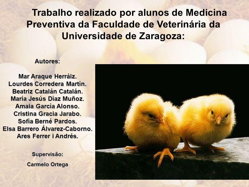 Trabalho realizado por alunos de Medicina Preventiva da Faculdade de Veterinária da Universidade de Zaragoza: