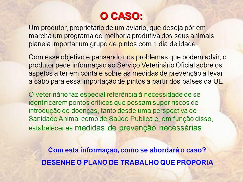 O CASO: