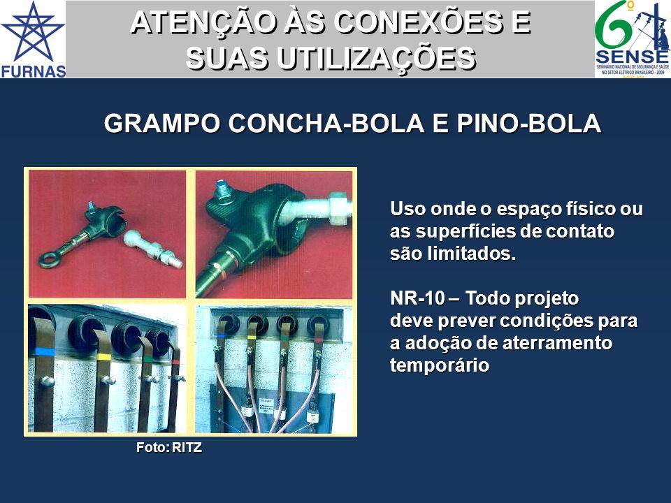 GRAMPO CONCHA-BOLA E PINO-BOLA