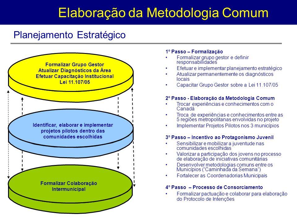 Elaboração da Metodologia Comum