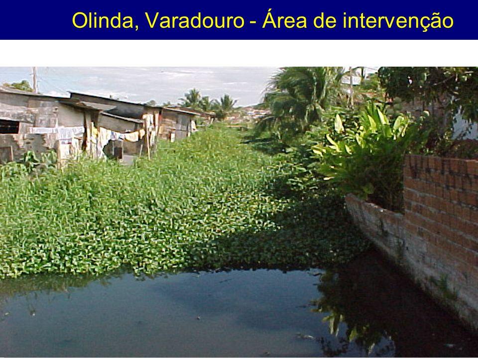 Olinda, Varadouro - Área de intervenção