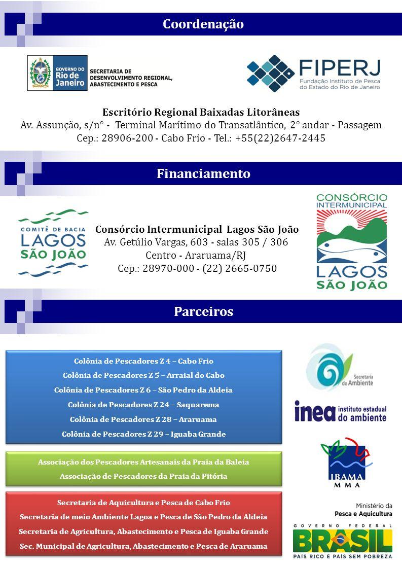 Coordenação Financiamento Parceiros