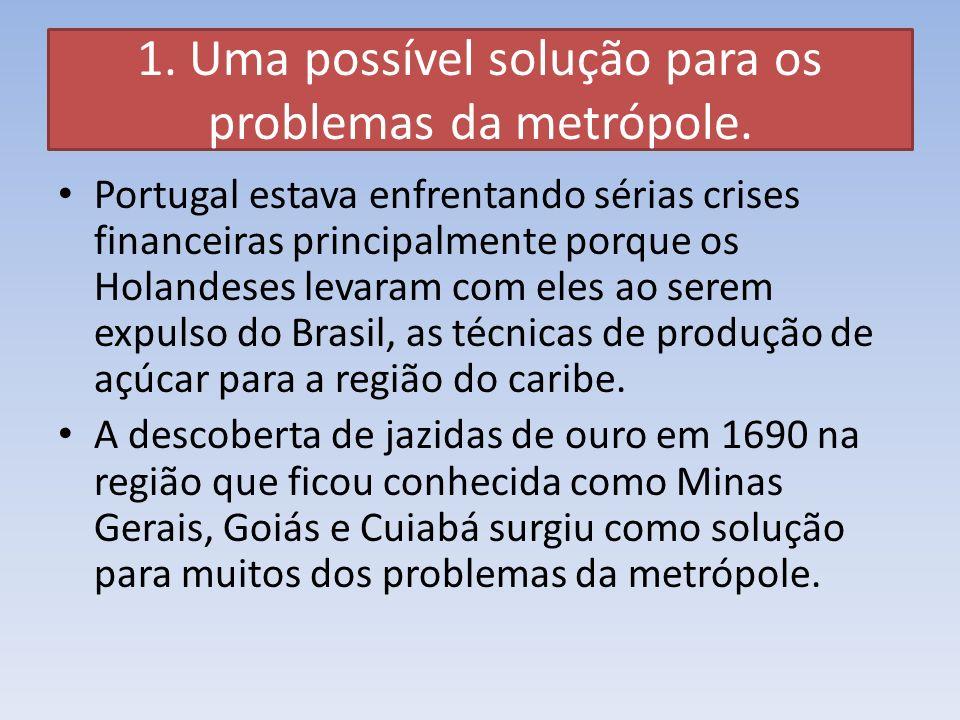 1. Uma possível solução para os problemas da metrópole.