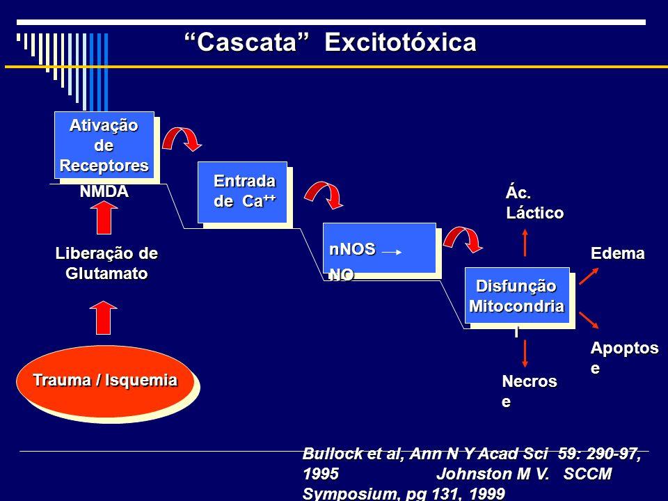 Cascata Excitotóxica