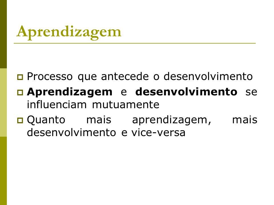 Aprendizagem Processo que antecede o desenvolvimento