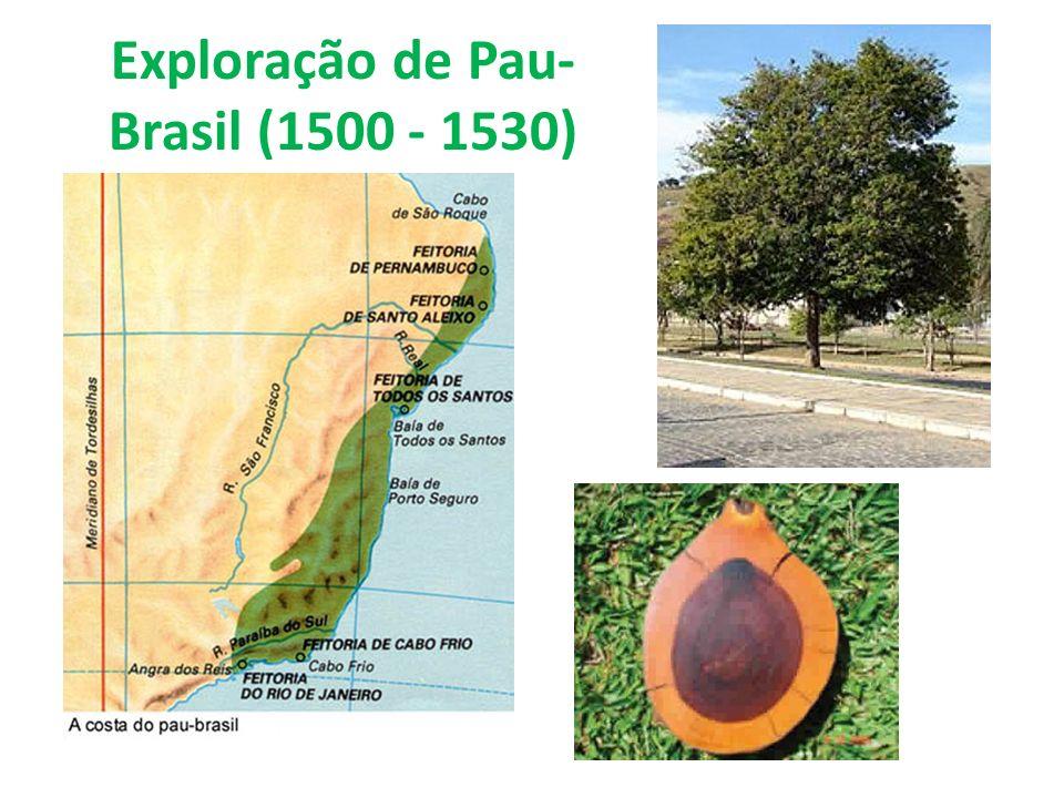 Exploração de Pau-Brasil (1500 - 1530)