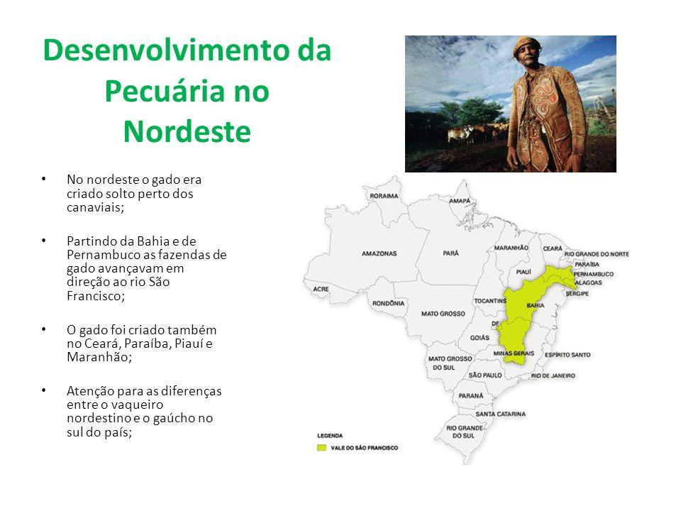 Desenvolvimento da Pecuária no Nordeste