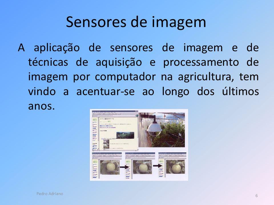 Sensores de imagem