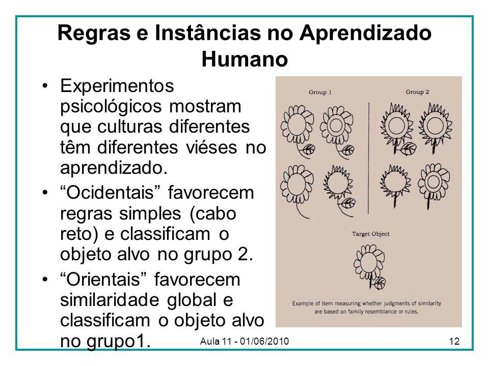 Regras e Instâncias no Aprendizado Humano