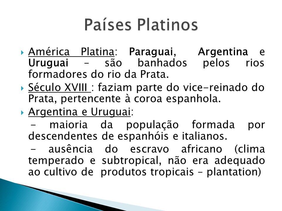 Países Platinos América Platina: Paraguai, Argentina e Uruguai – são banhados pelos rios formadores do rio da Prata.