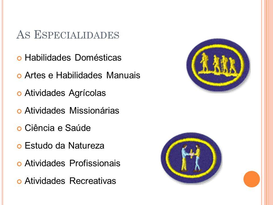 As Especialidades Habilidades Domésticas Artes e Habilidades Manuais