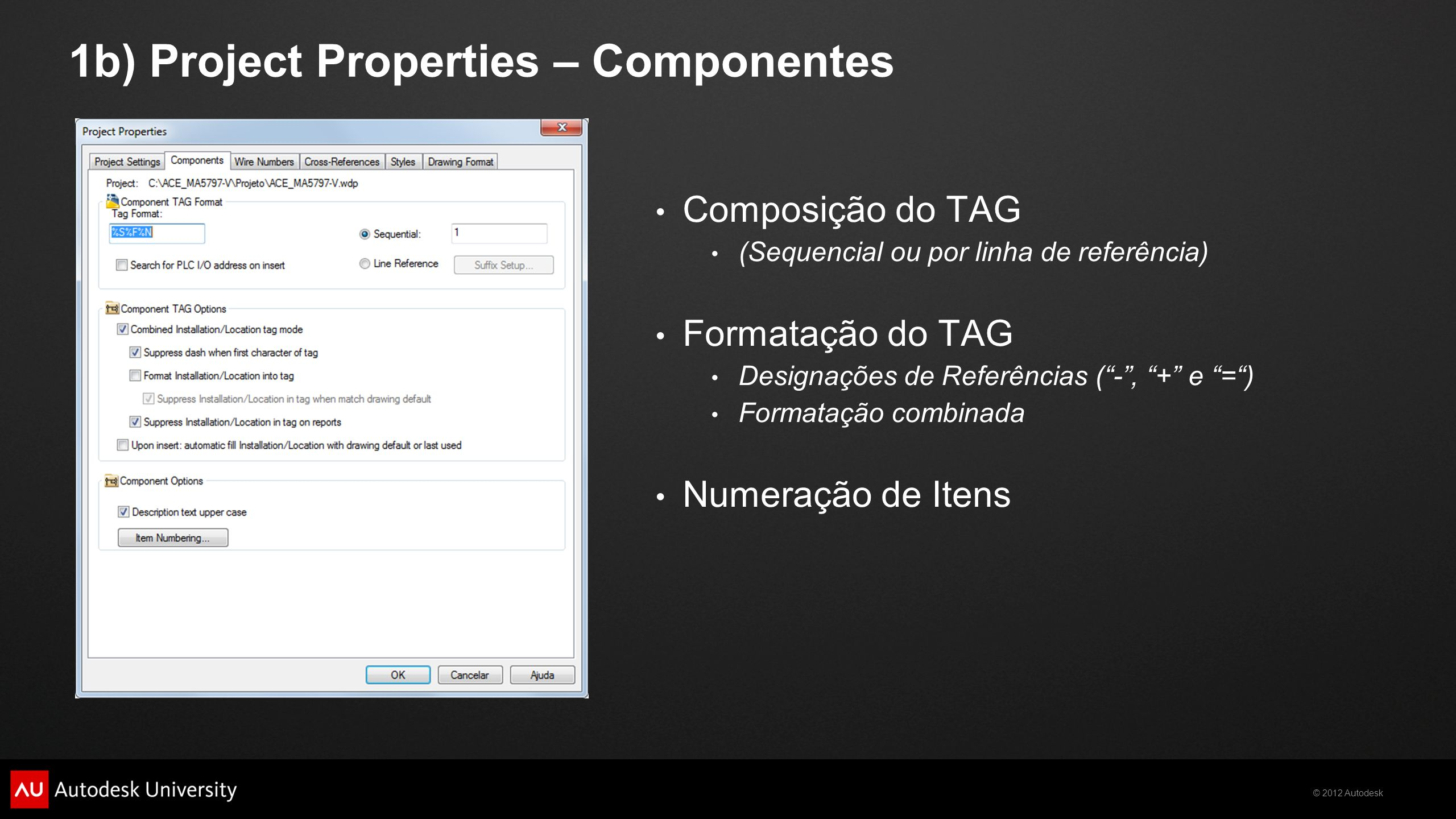 1b) Project Properties – Componentes