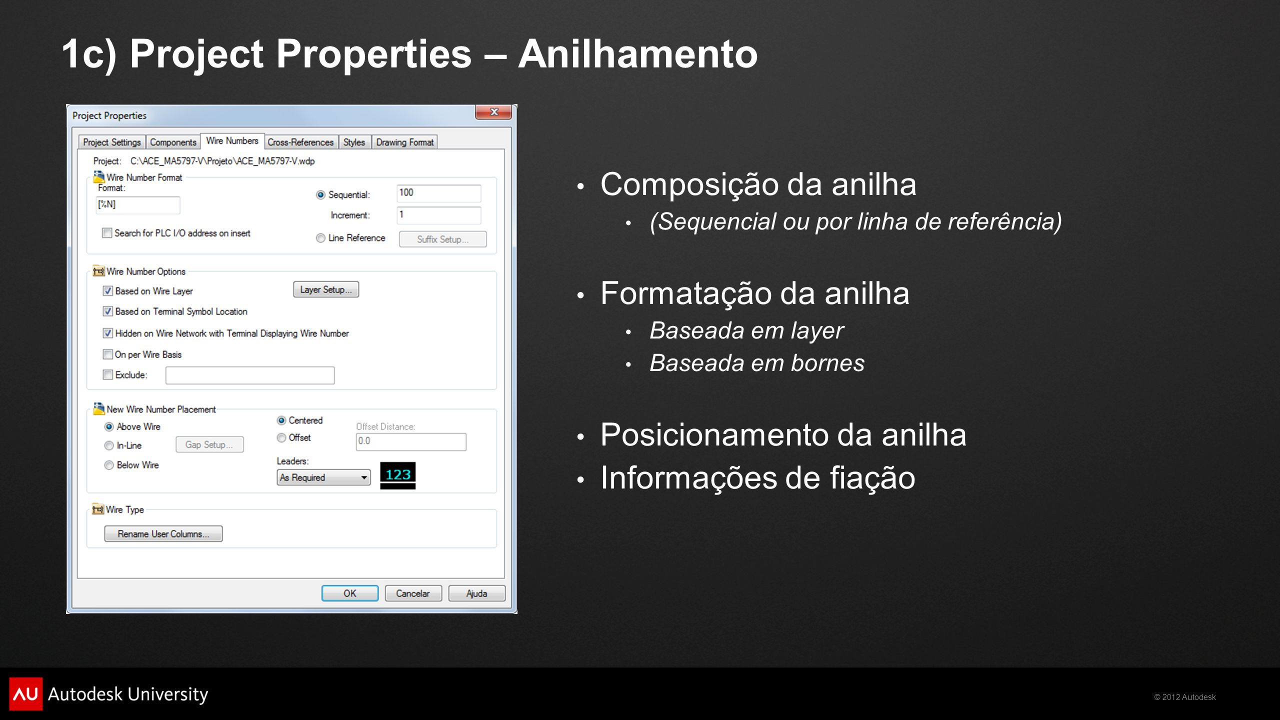 1c) Project Properties – Anilhamento