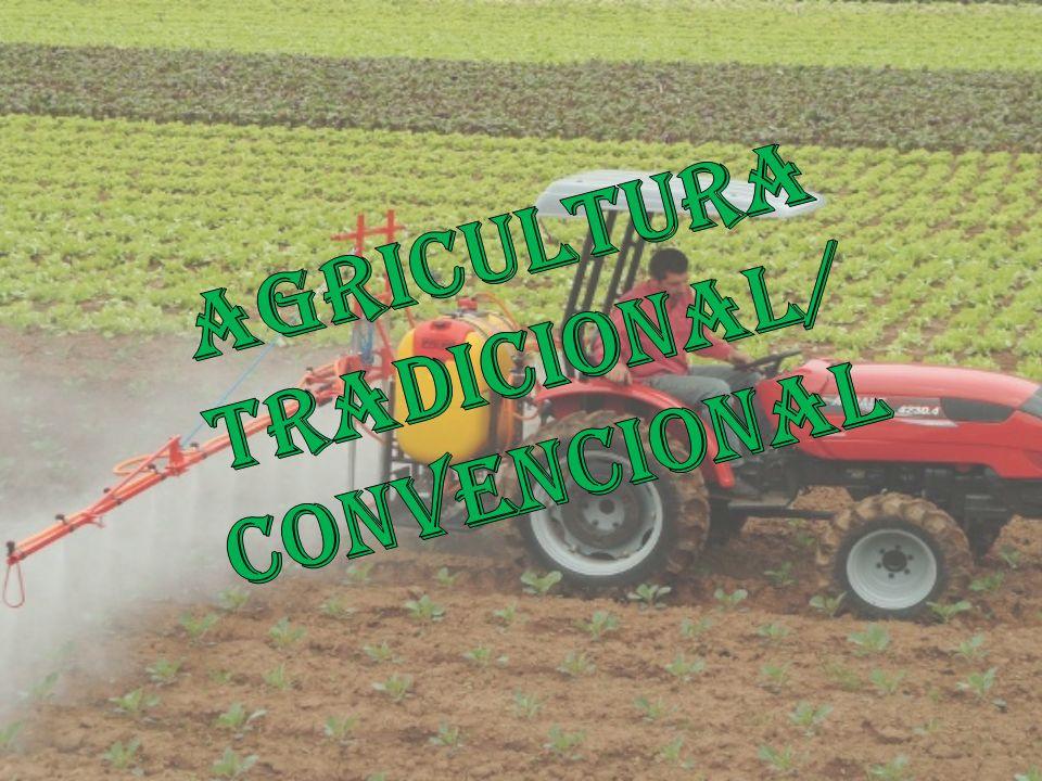 Agricultura Tradicional/ convencional