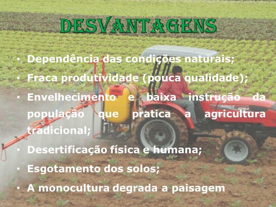 Desvantagens Dependência das condições naturais;