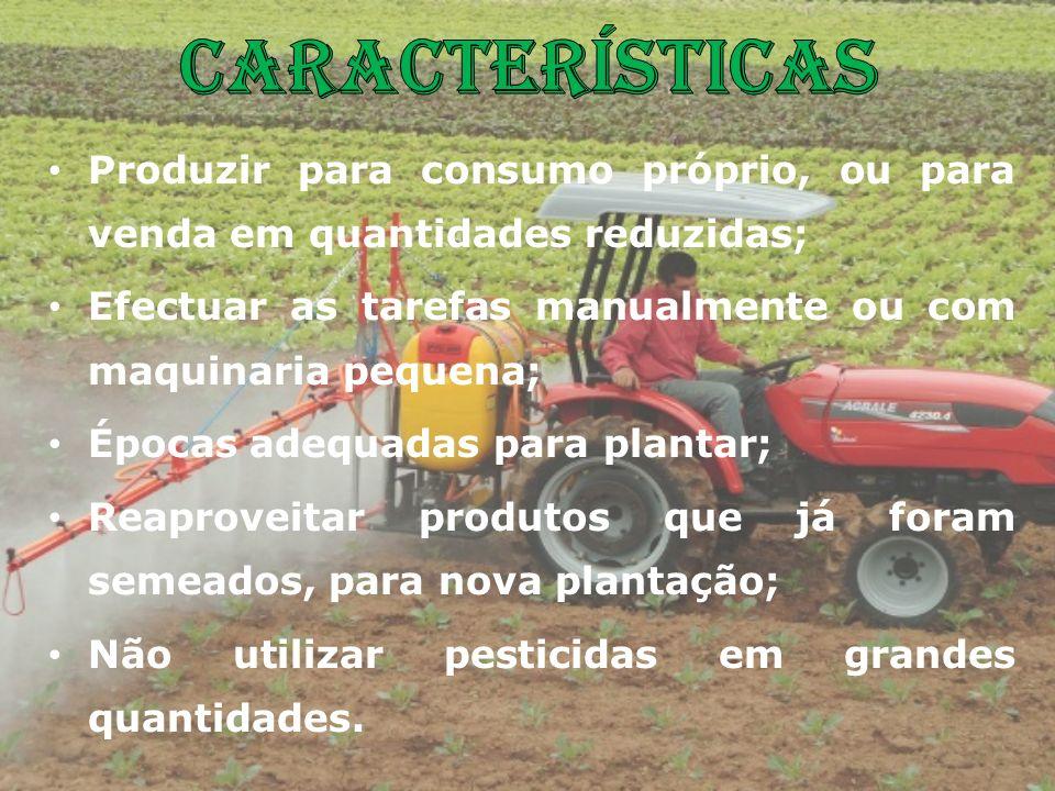CaracterísticasProduzir para consumo próprio, ou para venda em quantidades reduzidas; Efectuar as tarefas manualmente ou com maquinaria pequena;