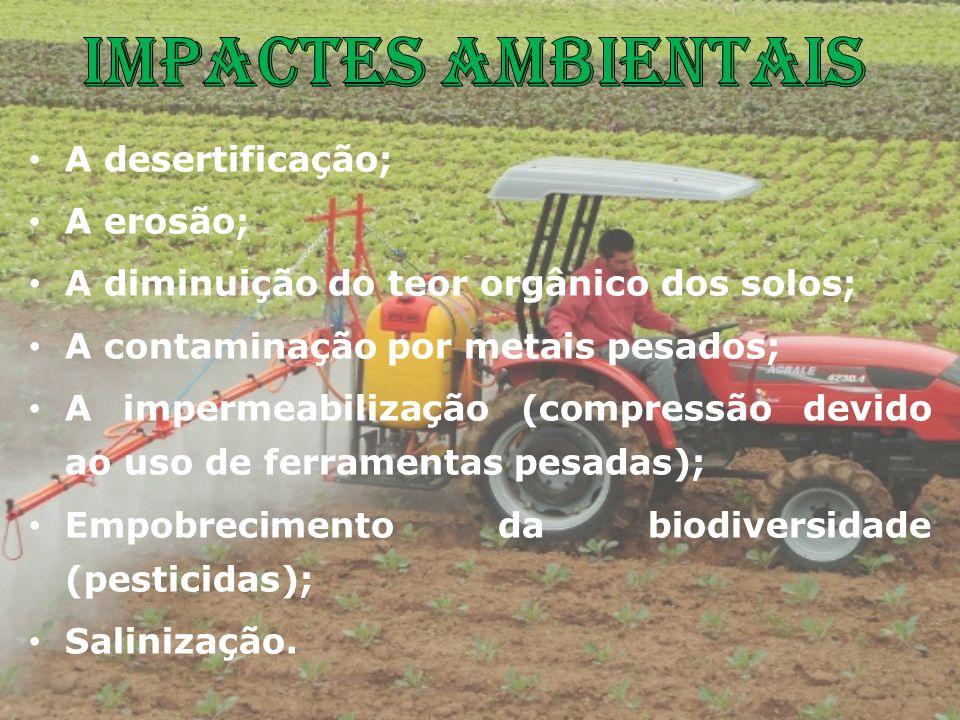 Impactes ambientais A desertificação; A erosão;