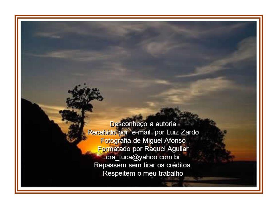 Recebido por e-mail por Luiz Zardo Fotografia de Miguel Afonso