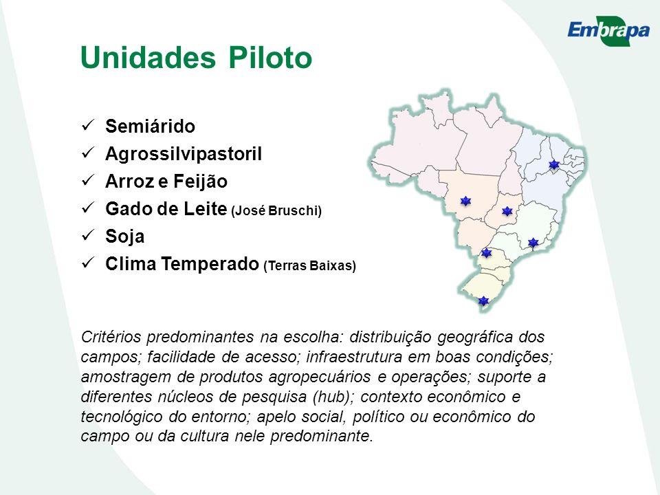 Unidades Piloto Semiárido Agrossilvipastoril Arroz e Feijão
