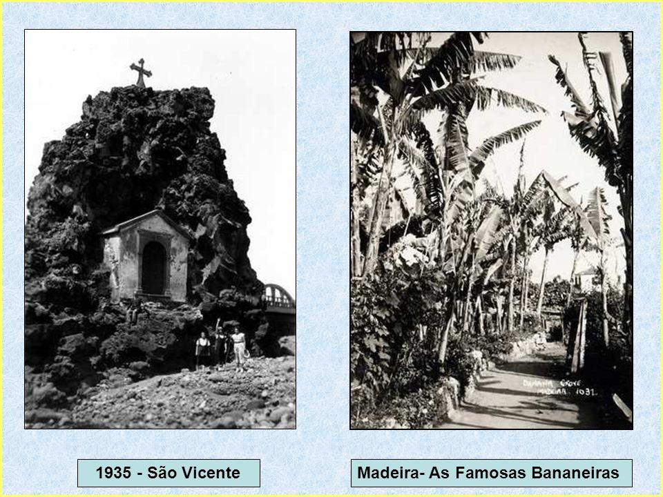 1935 - São Vicente Madeira- As Famosas Bananeiras