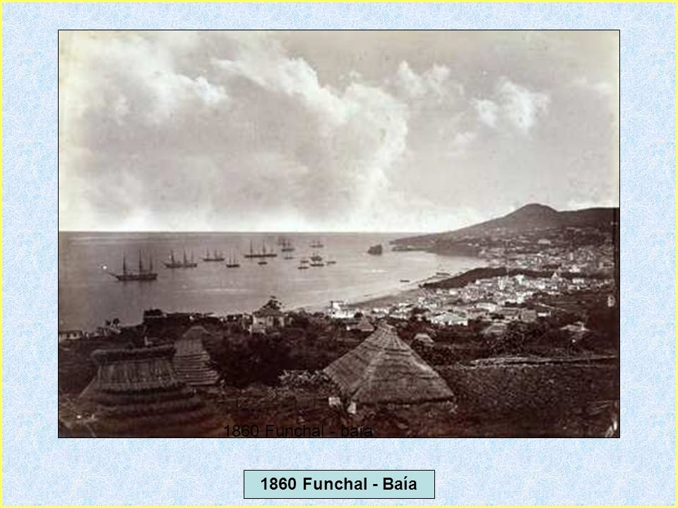 1860 Funchal - baía 1860 Funchal - Baía