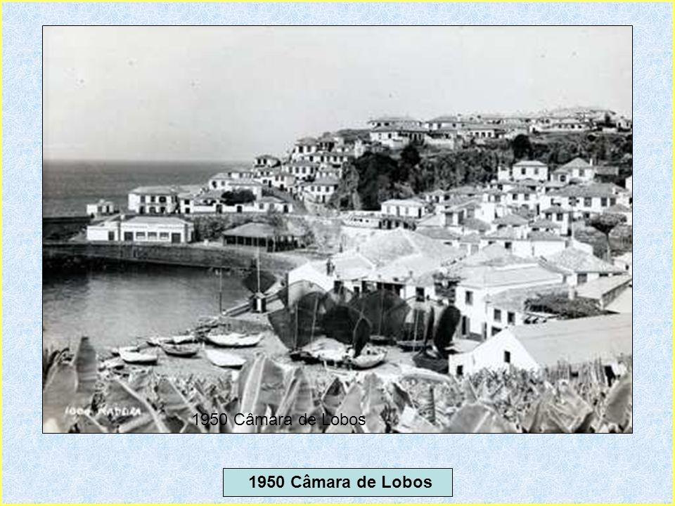 1950 Câmara de Lobos 1950 Câmara de Lobos