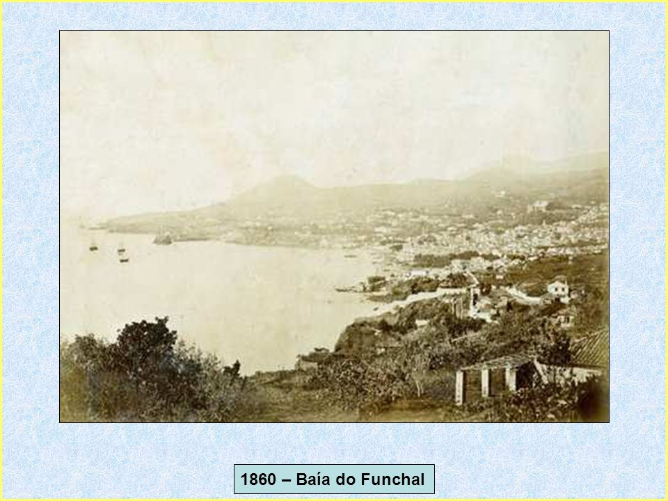 1860 – Baía do Funchal