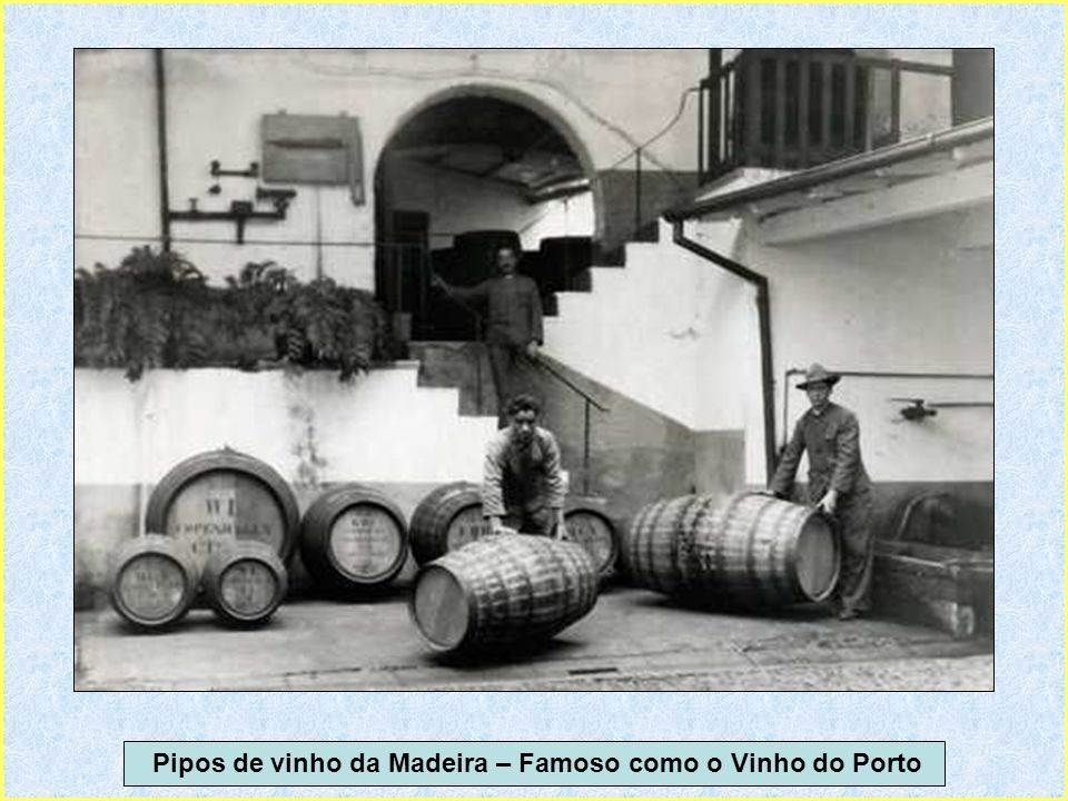 Pipos de vinho da Madeira – Famoso como o Vinho do Porto