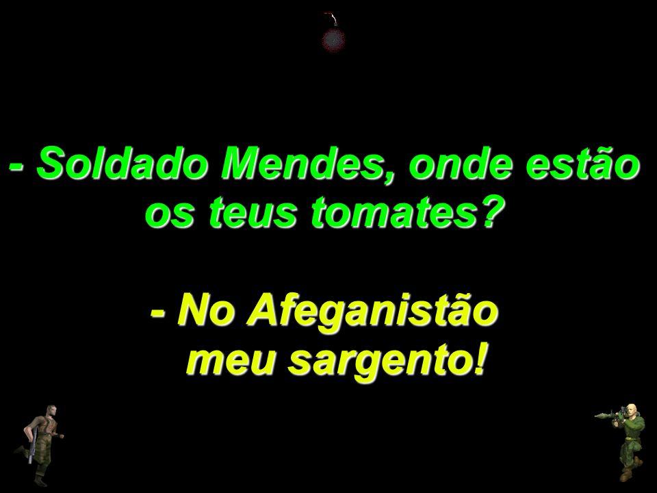 - Soldado Mendes, onde estão os teus tomates