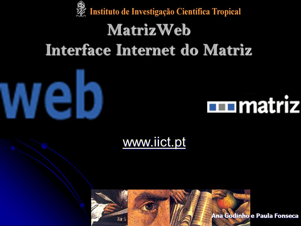 MatrizWeb Interface Internet do Matriz