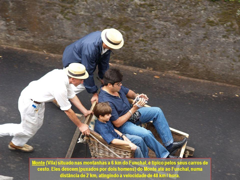 Monte (Vila) situado nas montanhas a 6 km do Funchal, é típico pelos seus carros de cesto.
