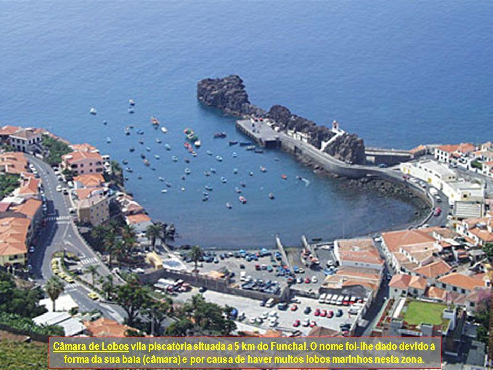 Câmara de Lobos vila piscatória situada a 5 km do Funchal