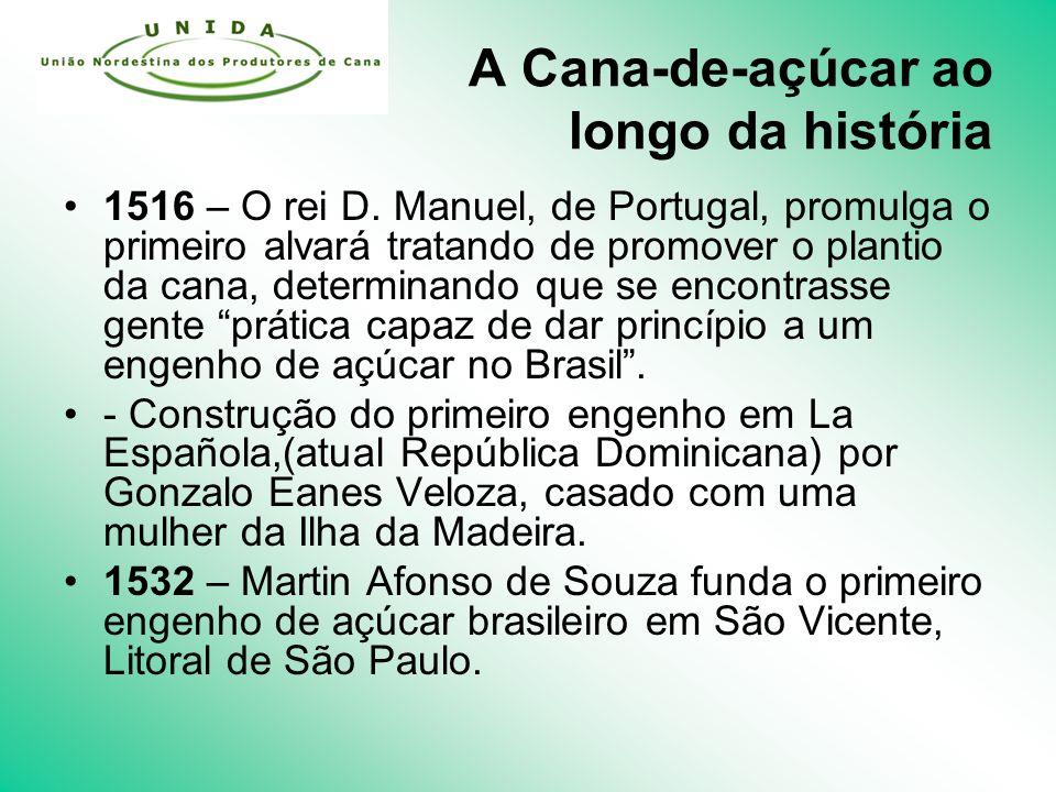 A Cana-de-açúcar ao longo da história