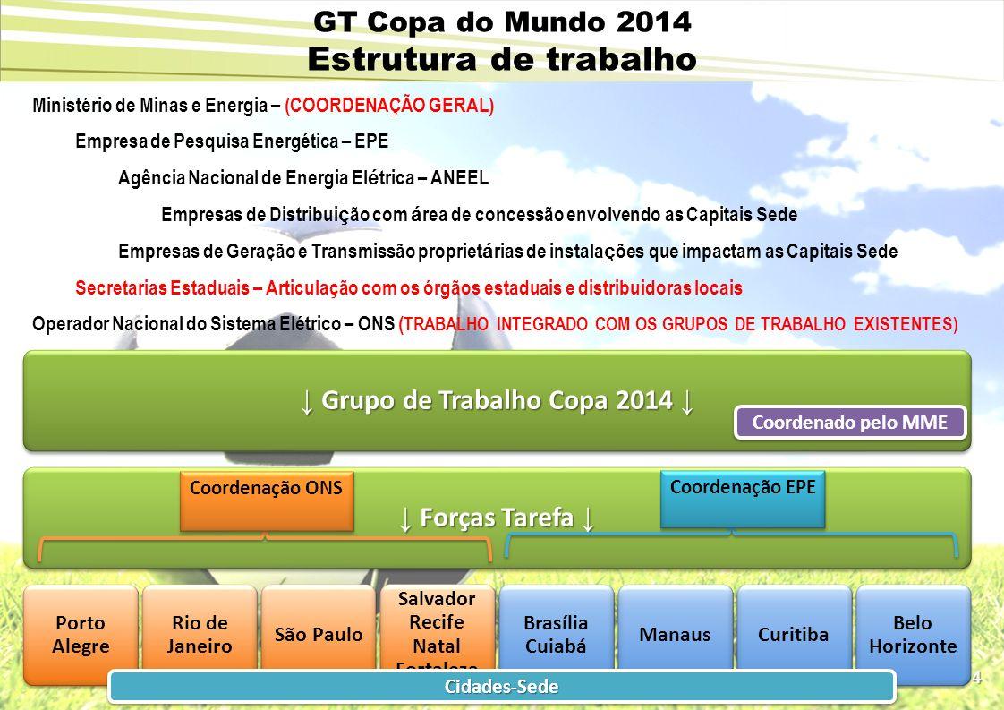 GT Copa do Mundo 2014 Estrutura de trabalho