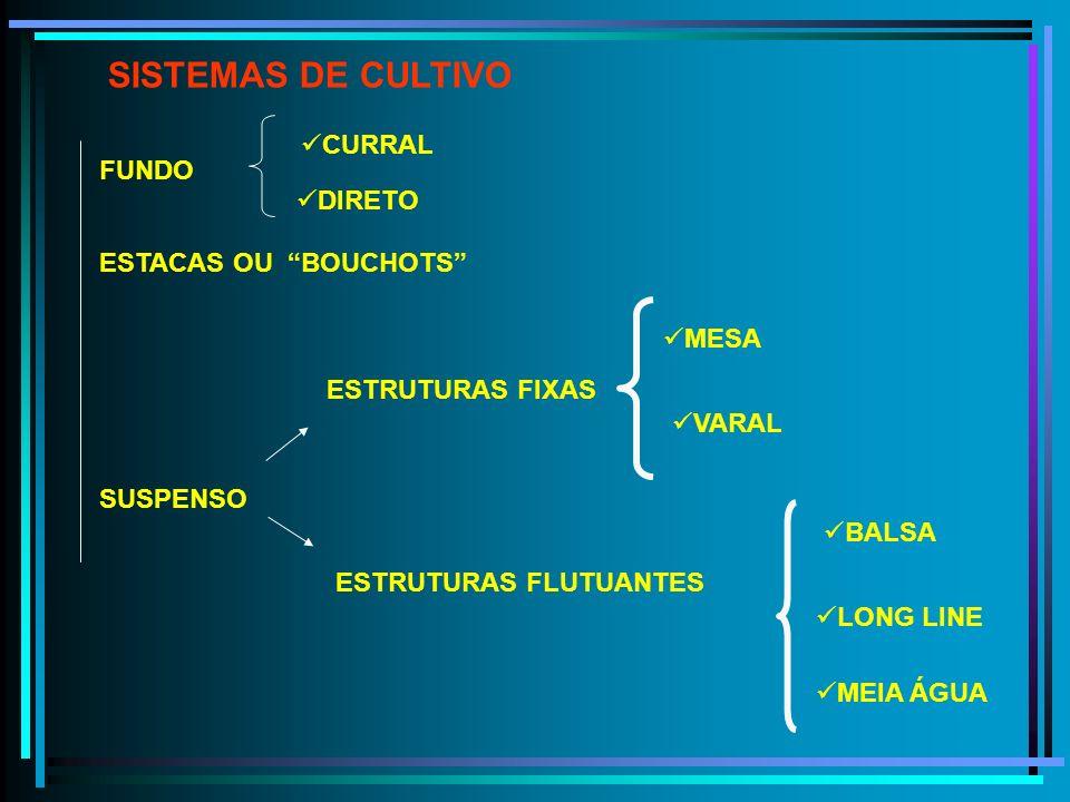 SISTEMAS DE CULTIVO CURRAL FUNDO DIRETO ESTACAS OU BOUCHOTS MESA