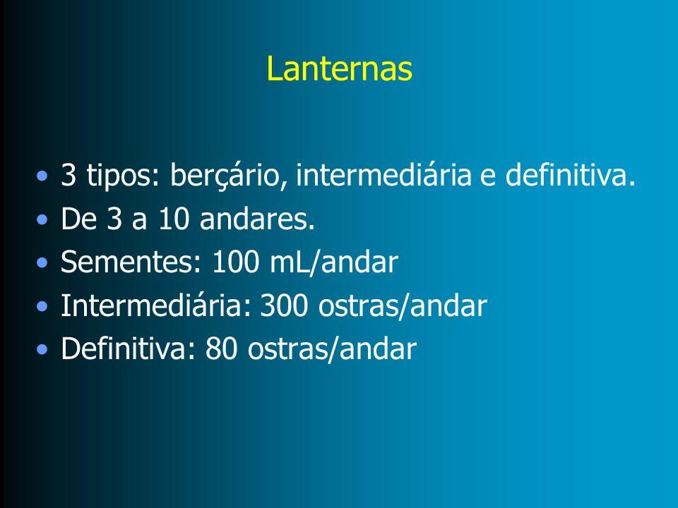 Lanternas 3 tipos: berçário, intermediária e definitiva.