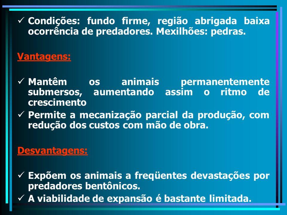 Condições: fundo firme, região abrigada baixa ocorrência de predadores