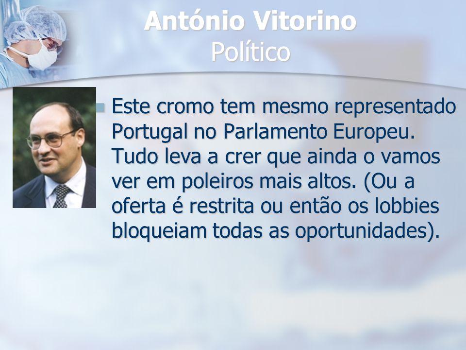 António Vitorino Político