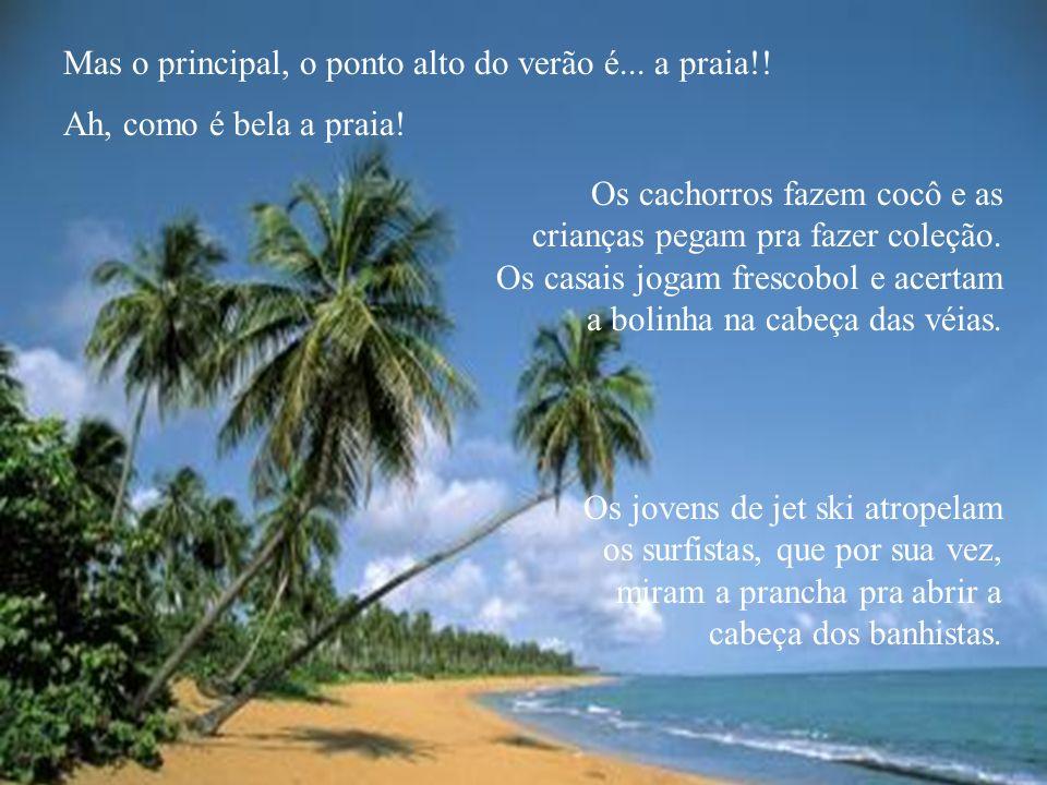 Mas o principal, o ponto alto do verão é... a praia!!