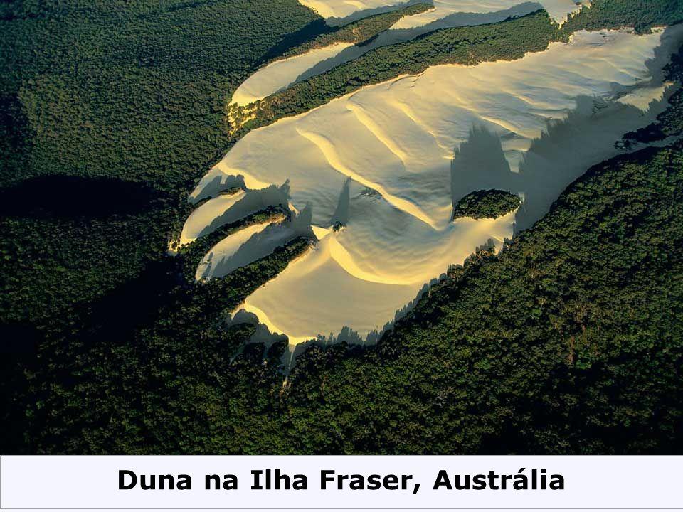 Duna na Ilha Fraser, Austrália