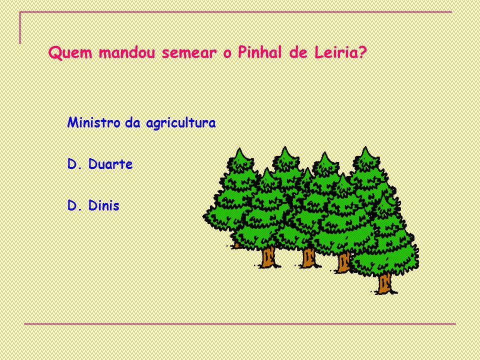 Quem mandou semear o Pinhal de Leiria
