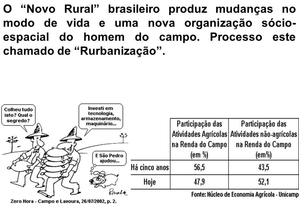 O Novo Rural brasileiro produz mudanças no modo de vida e uma nova organização sócio-espacial do homem do campo.