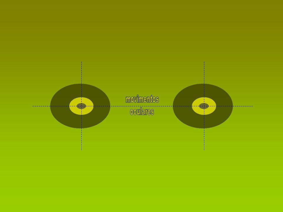 movimentos oculares
