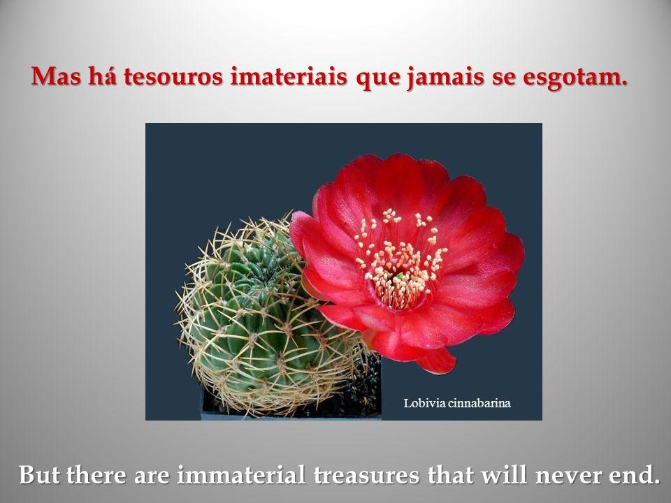 Mas há tesouros imateriais que jamais se esgotam.