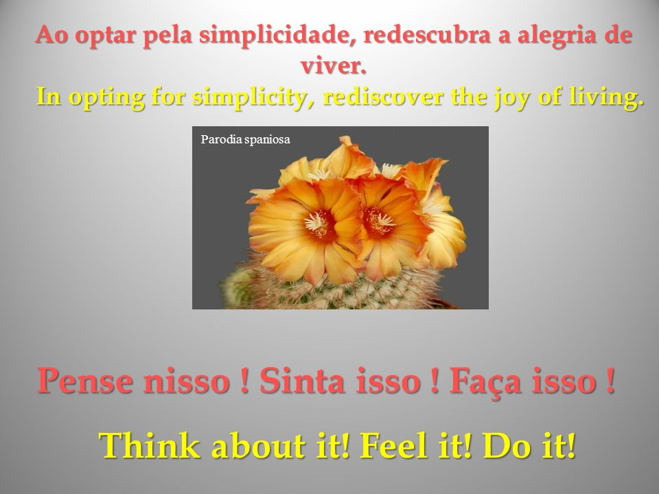 Pense nisso ! Sinta isso ! Faça isso ! Think about it! Feel it! Do it!