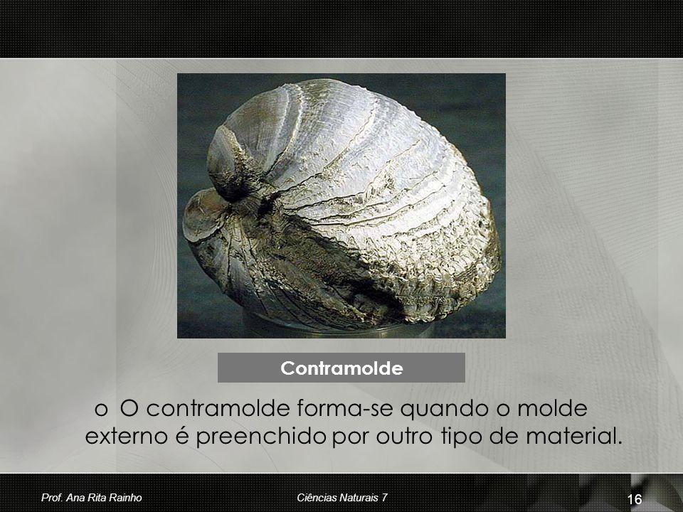 Contramolde O contramolde forma-se quando o molde externo é preenchido por outro tipo de material. Prof. Ana Rita Rainho.